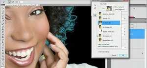 Use the new Refine Edge feature in Adobe Photoshop CS5