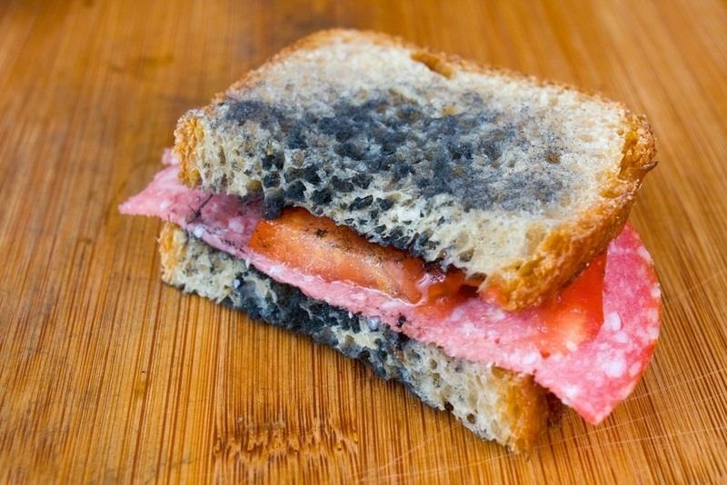 How to Tell When It's Safe to Eat Around Moldy Food