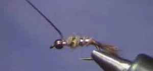 Tie a Hare's Ear Nymph for fly fishing