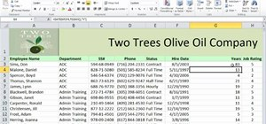 Calculate the difference between two dates in Microsoft Excel 2010