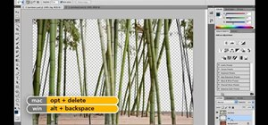 Expand a selection when using Adobe Photoshop CS5