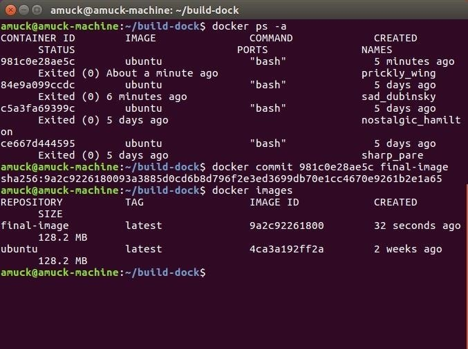 How to Create a Reusable Burner OS with Docker, Part 2: Customizing Our Hacking Container