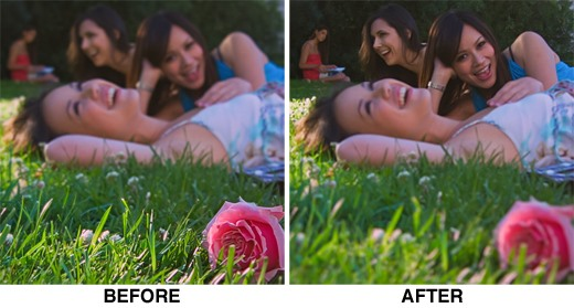 "Revolutionary ""Light Field Camera"" Lets You Focus After the Picture Is Taken"