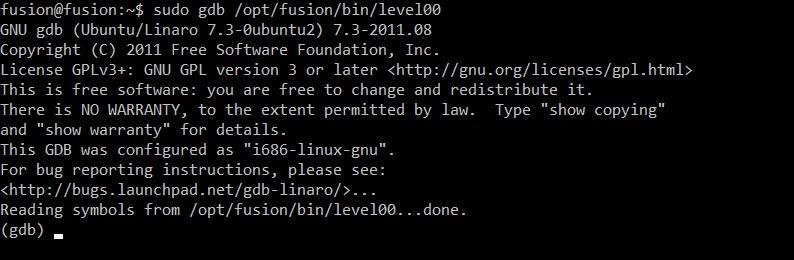 Advanced Exploitation: How to Find & Write a Buffer Overflow Exploit for a Network Service