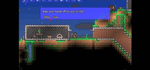 Get an Arms Dealer to appear in Terraria
