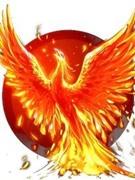 Phoenix750