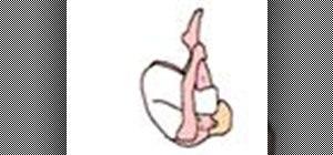 Do the beginner pilates move Roll Like a Ball