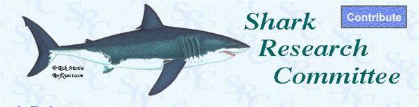 Pacific Shark News Reports