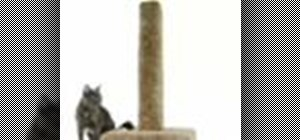 Make a cat scratching post