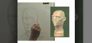 Draw a portrait with a planar head
