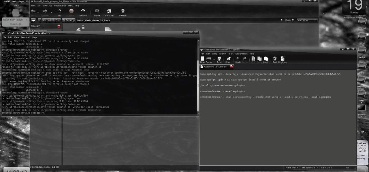 linux mint install flash player chromium