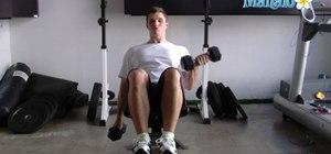 Do incline dumbbell curl exercises with free weights