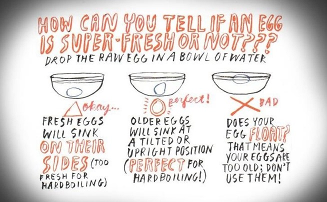 "Welcome to Health: How to Tell if Your ""Expired"" Eggs Are Still ..."