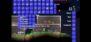 Get a Demolitionist to your house in Terraria