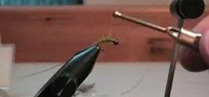 Tie an electric caddis for fly fishing