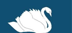 Draw a swan