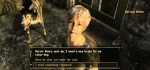 Find all seven NPCs able to repair your gear in Fallout: New Vegas
