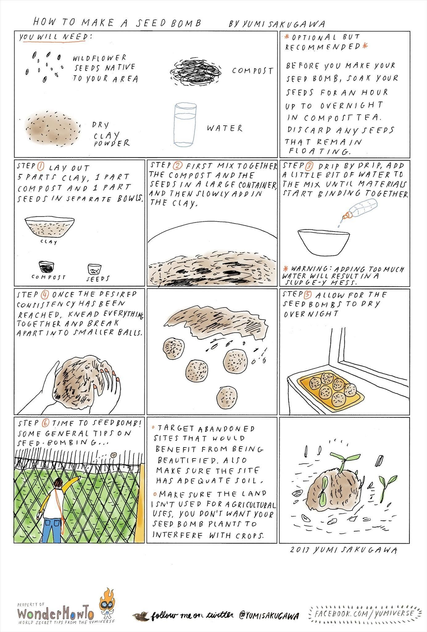 Guerrilla Gardening 101: How to Make a Seed Bomb