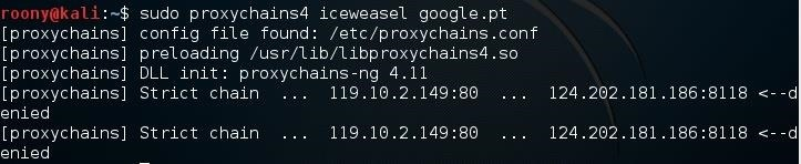 How to Run a Program with Proxychains?