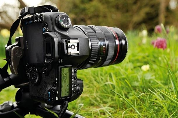 Study: You'll Remember More by Photographing Less