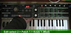 Create a Roland TB-303 synth sound with a patch on a MicroKorg