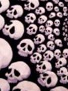 skullfinder