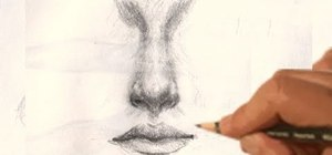 Draw a realistic human nose