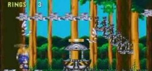 Exploit the blimp bug on mushroom hill in Sonic 3