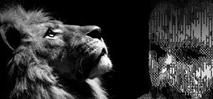 Hack Mac OS X Lion Passwords