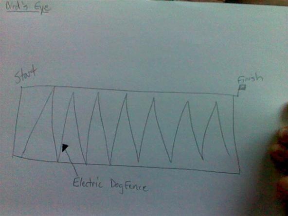 Electric Dog Fence Race