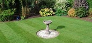Create a New Lawn From Turf or Seed