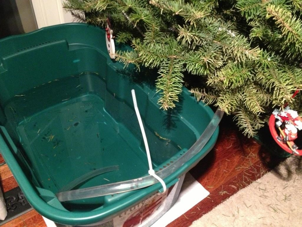 5 Weird & Easy Ways to Water Your Christmas Tree