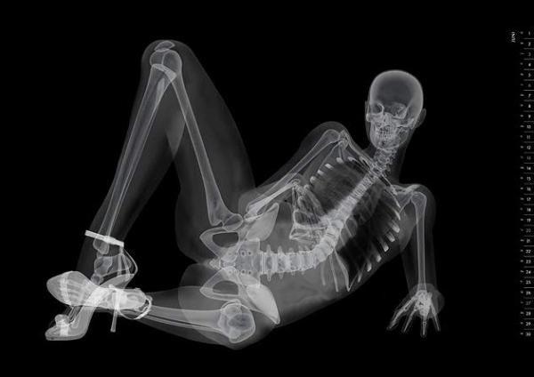 Hubba, Hubba. I Like My Ladies X-Rayed