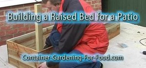 Construct a raised bed vegetable garden