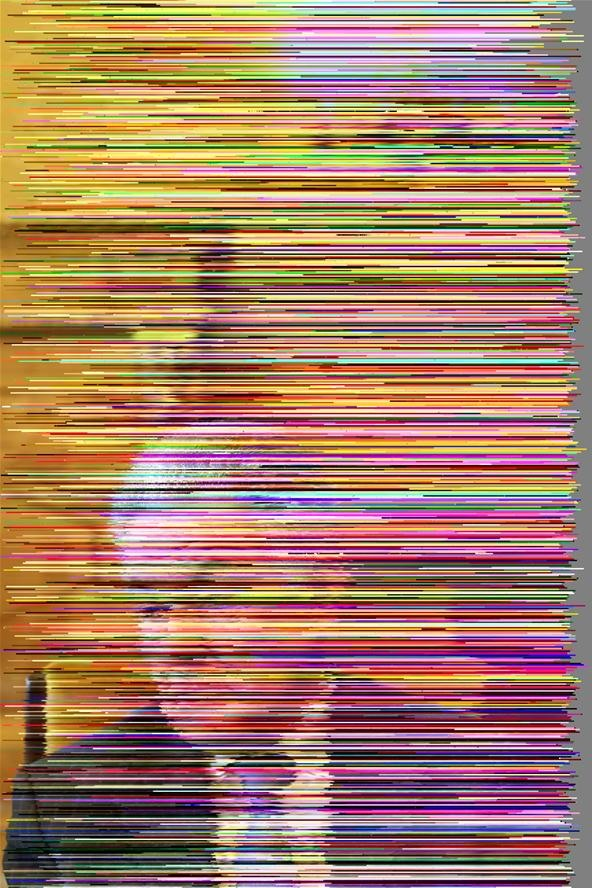 Flickr Images Corrupted by GlitchBot