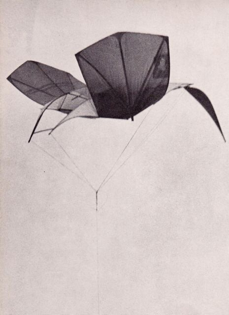 Beautiful Kites From 1957