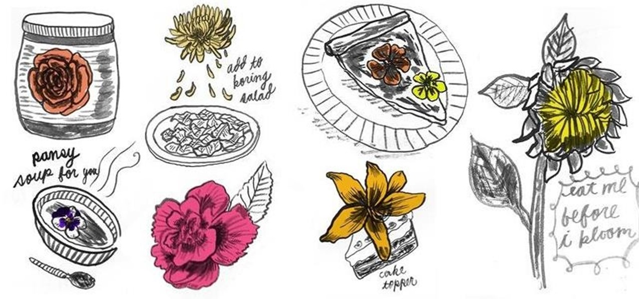 9 Eat-Me Flowers for Haute Cuisine