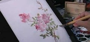 Paint roses and a butterfly in Chinese painting