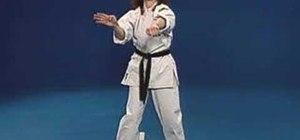 Execute 8th Kyu requirements for Pwang Gai Noon Ryu