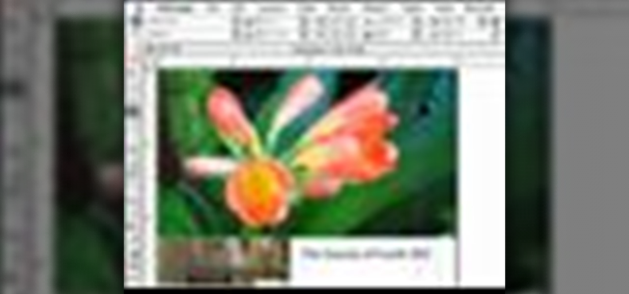 make-images-fit-with-indesign-cs2.1280x600.jpg