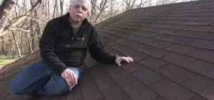 Keep roof shingles free of moss, algae, and mildew