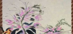 Draw a Chinese cleome - Chinese brush painting