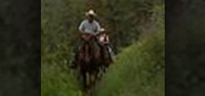 Practice proper horse-riding etiquette on the trail