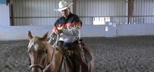Use direct and indirect reining