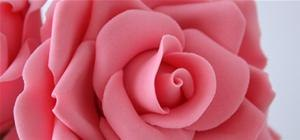 Beautiful Gum Paste Roses