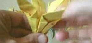 Origami a luscious lily