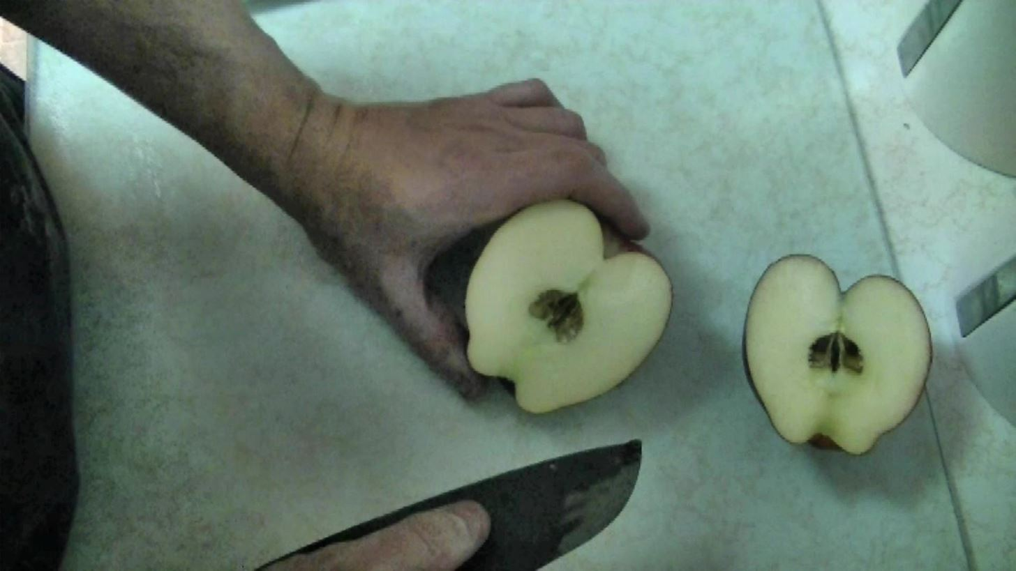 How to Create a Beautiful Edible Apple Swan