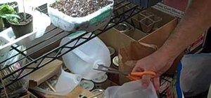 Make cheap seed planters for a small kitchen garden