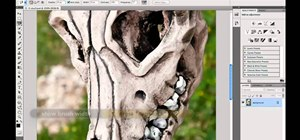 Make selections with the Magnetic Lasso tool in Adobe Photoshop CS5