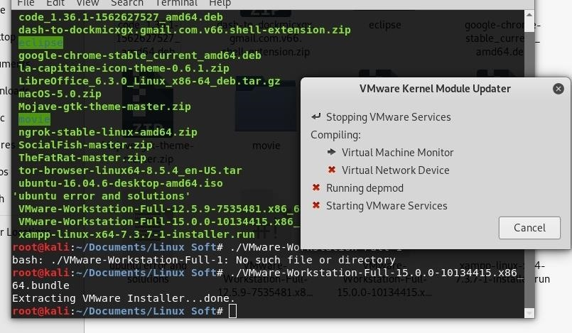 VMware Issue in Kali Linux 2019.3